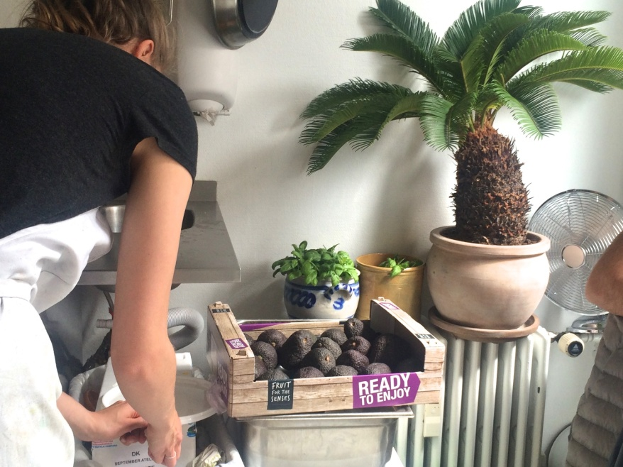 Avocados at Atelier September