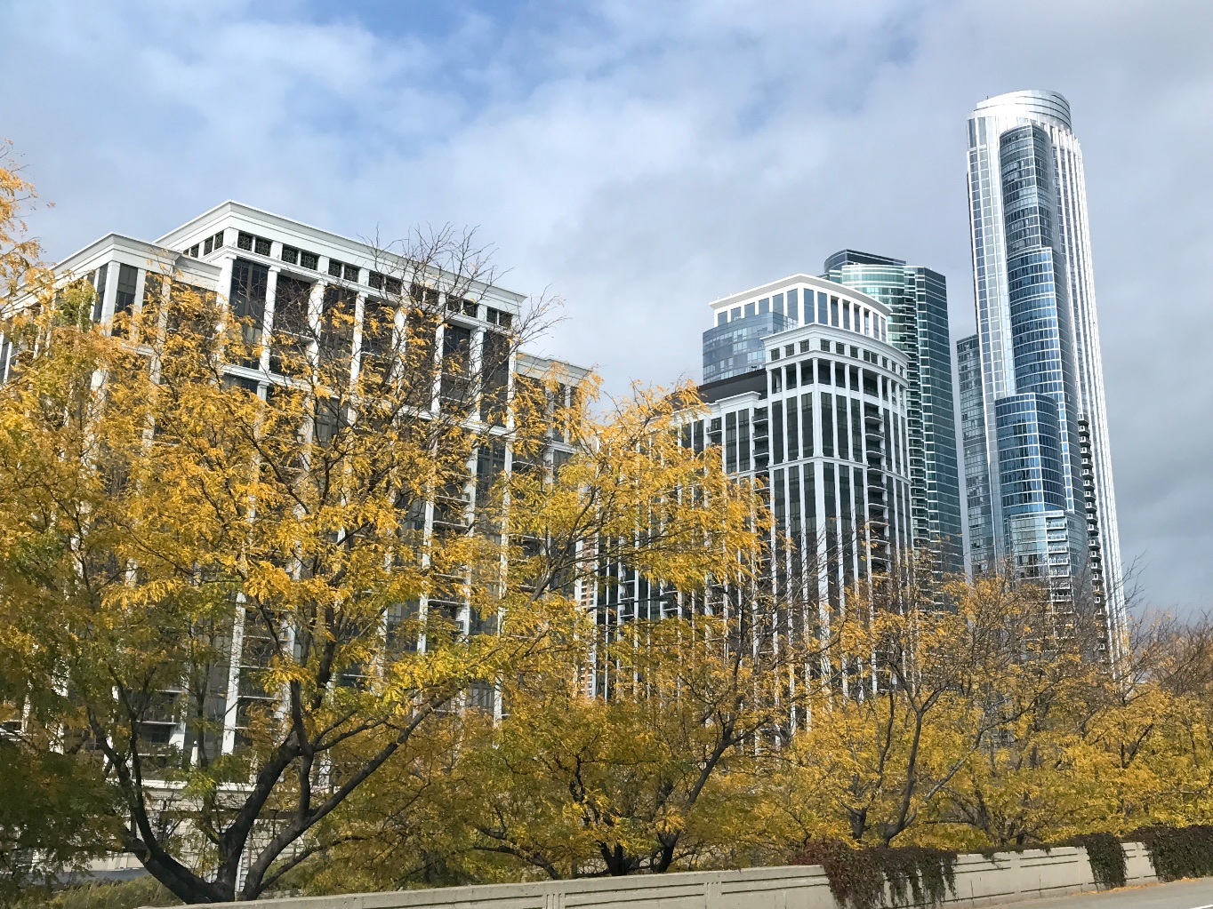 Chicago skyline from Lake Shore Drive