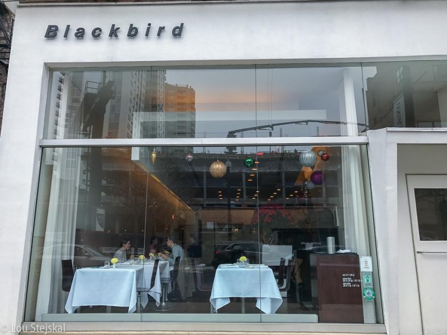 blackbird-003