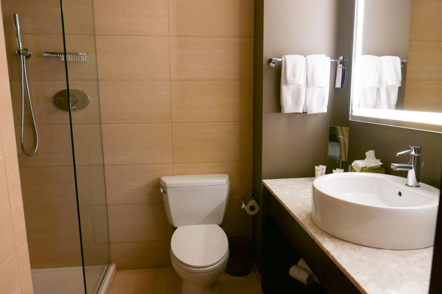 Bathroom at Dana Hotel and Spa